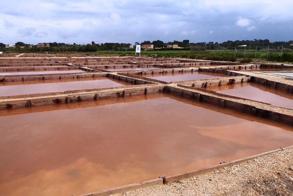 Saline auf Mallorca